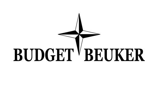 budget-beuker-bearings-kopen